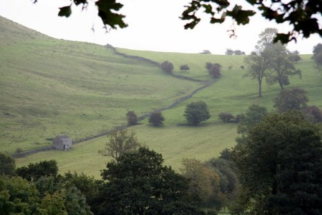 Холмистые луга