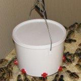 Самодельная поилка для цыплят