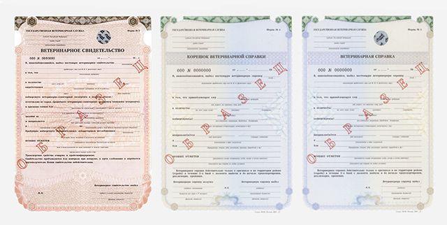 Документы на реализацию продукции ЛПХ
